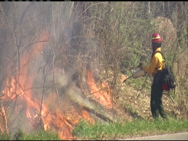 Prescribed burn at Catoctin State Park_44904860-159532
