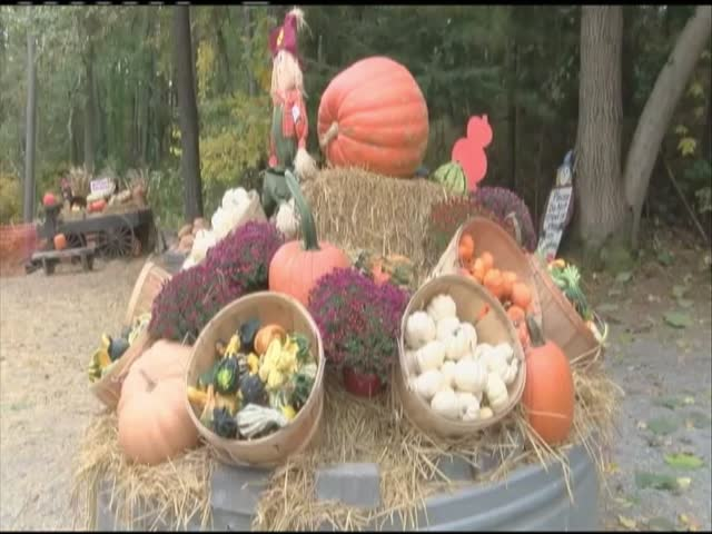 LOCAL FARM ECONOMY_88813361-159532