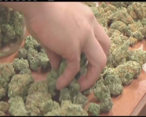 Court of Appeals said marijuana odor justifies car search_32815212