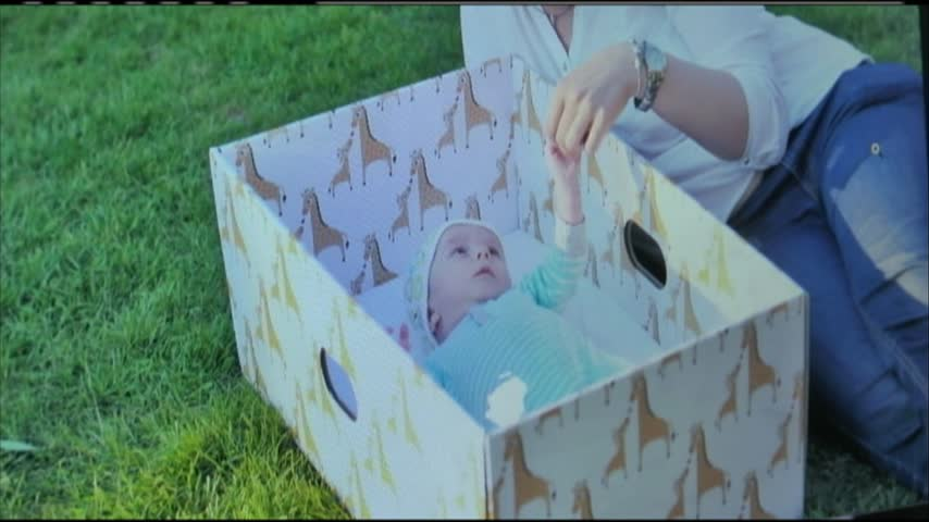 Baby boxes_15372005