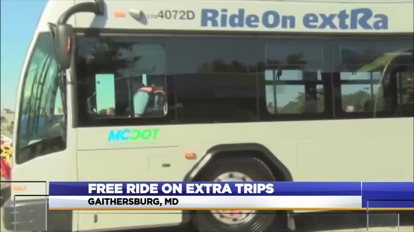 eXtra buses