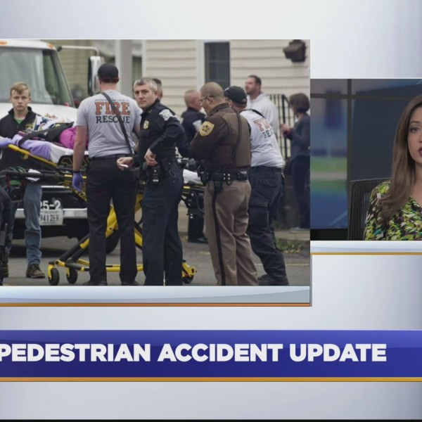 Pedestrian_accident_update_0_20180316031028