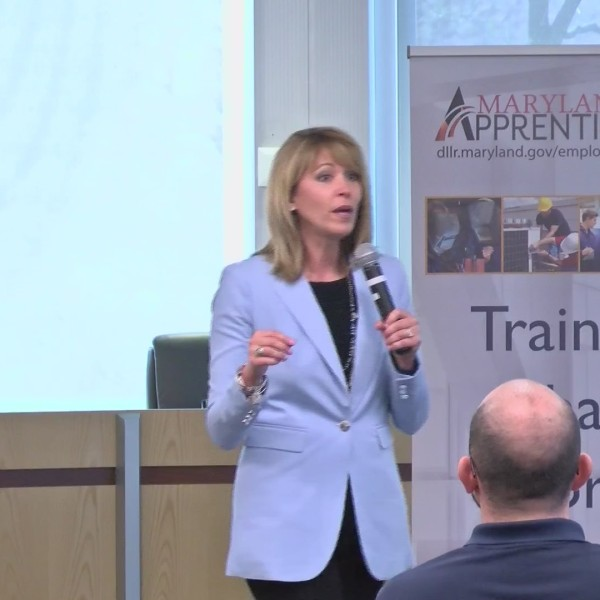 Youth_apprenticeship_0_20180413024431
