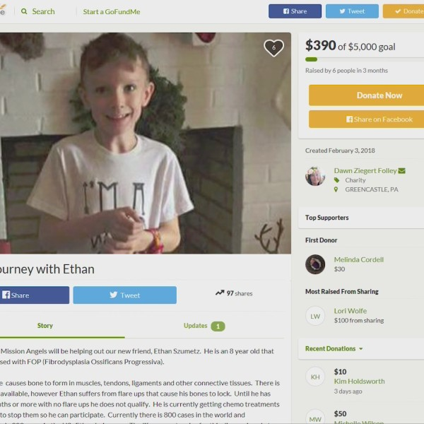 Fund_for_Ethan_0_20180507031709