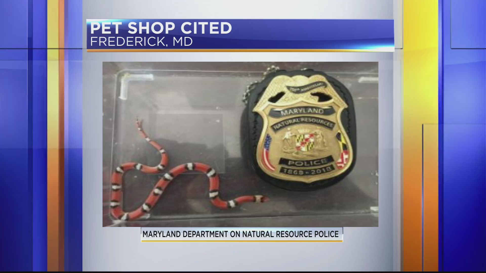 Frederick pet shop cited for selling prohibited snake