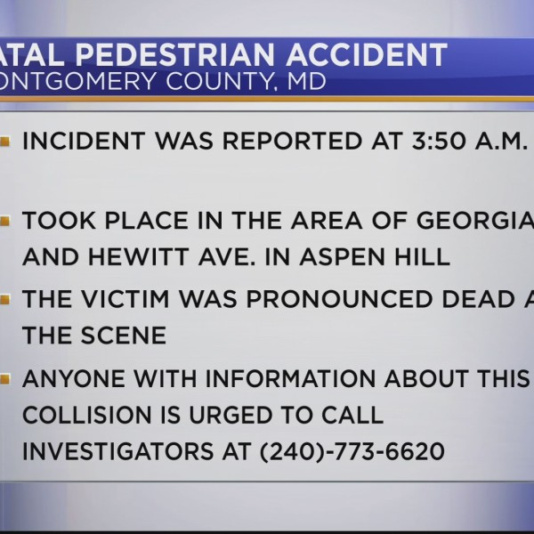 Fatal_hit_and_run_accident_0_20180608122243