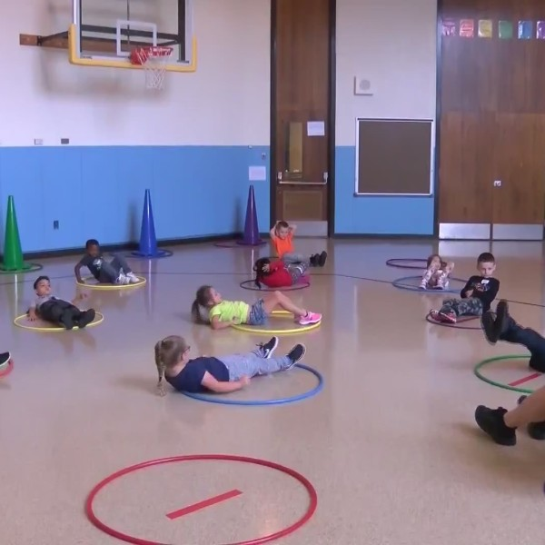 In_Focus__physical_education_and_health__0_20180926193957