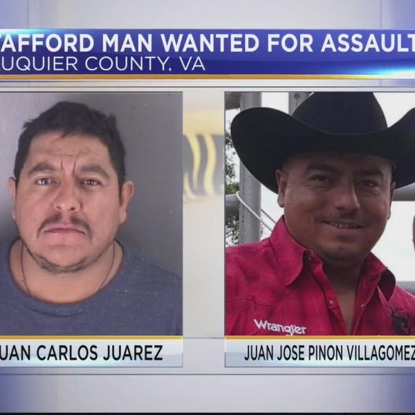 Man_wanted_0_20181024020914