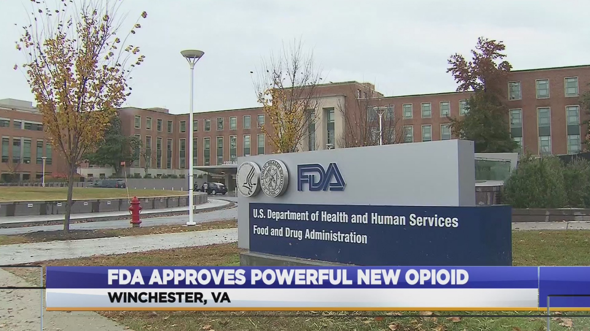 FDA_approves_new_opioid_0_20181105222700