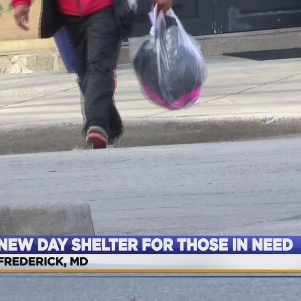 New_day_shelter_0_20181115011014