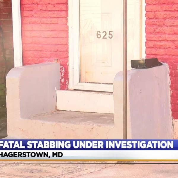 Fatal_stabbing_investigation_6_20181227172218