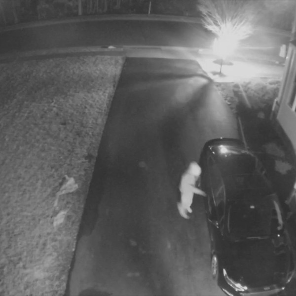 Car_burglaries_Loudoun_County_0_20190306005129