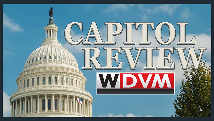 capitol-review_dont-miss_1552587162273.jpg