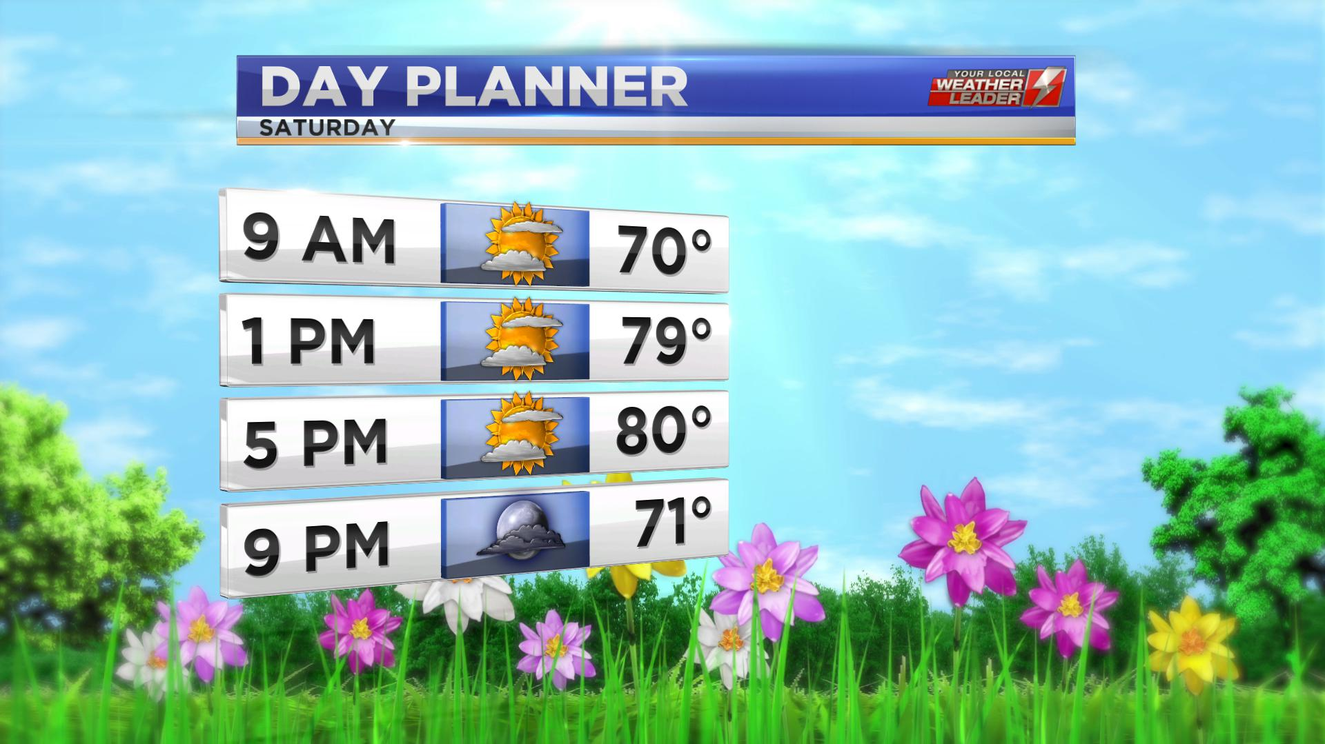Day Planner for Saturday 08 June 2019