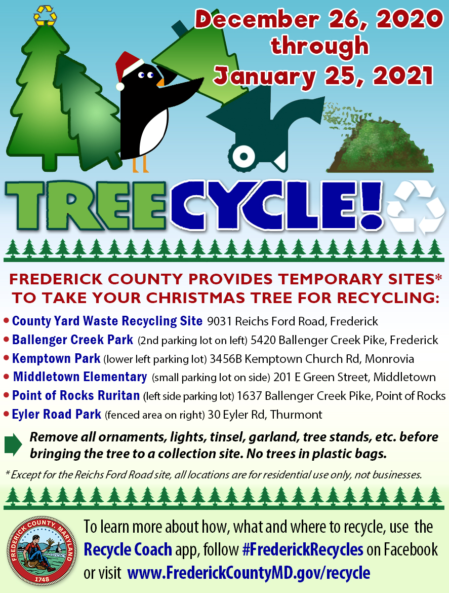 Clarksburg Trash Pickup On Christmas Eve 2021 Frederick County Provides Temporary Sites To Take Your Christmas Tree For Recycling Wdvm25 Dcw50 Washington Dc